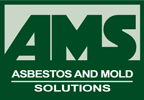 Asbestos and Mold Solutions